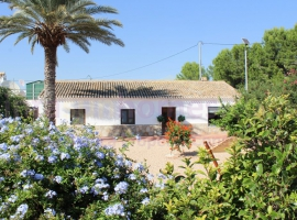 Country Property - Resale - Murcia - Murcia