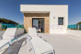 Obra Nueva - Detached Villa - Bigastro